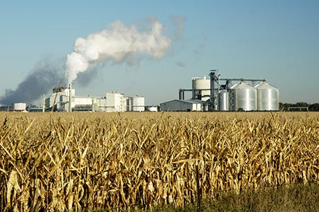 corn field with large production facility behind